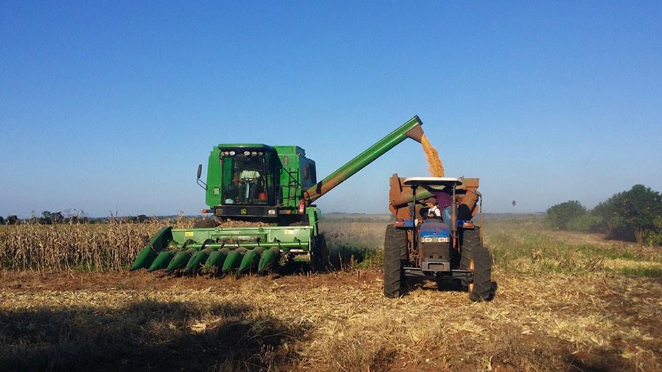 B1a agricultores maiz r